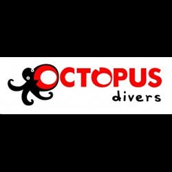 Octopus Divers logo print