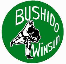 Bushido Winsum logo print