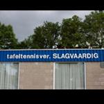 T.T.V. Slagvaardig
