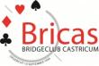 Bridgevereniging Bricas logo print