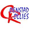 Logo De Coenstadrollies