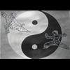Logo Tai Chi Hoorn