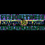 Logo Bart Schaafsma Zwemmen