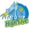 Logo High Five