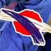 Logo S.V. Fuyiama