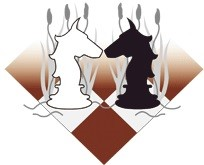 Schaakgenootschap Vecht en Ommelandenk logo print