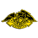 Logo Black Eagles Rosmalen