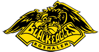 Black Eagles Rosmalen logo print