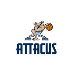 Attacus logo print