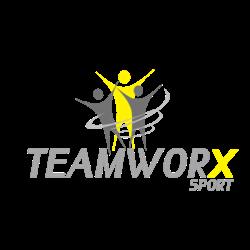 Teamworx logo print