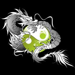Budoclub Tryitout logo print