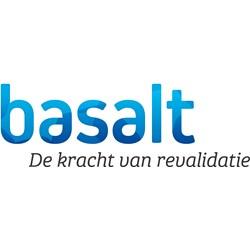 Basalt logo print