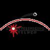 Logo SV Velden