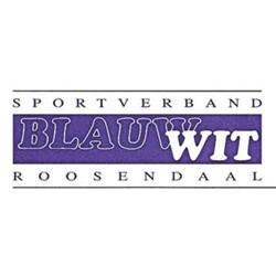Blauw Wit Biljart logo print