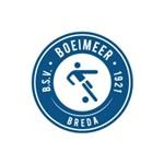 Logo BSV Boeimeer