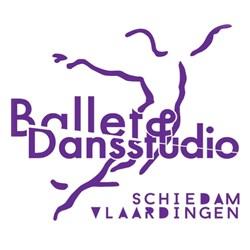 Ballet- en Dansstudio Schiedam en Vlaardingen logo print