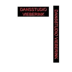 Dansstudio Vieberink Aalten logo print