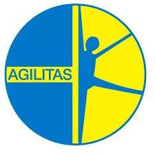 Agilitas logo print