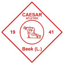 AV Caesar logo print