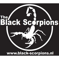ERHC The Black Scorpions logo print