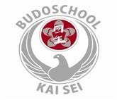 Stichting Budo Kai Sei (Budoschool Kai Sei) logo print