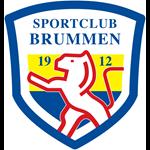 Logo Brummen Beweegt