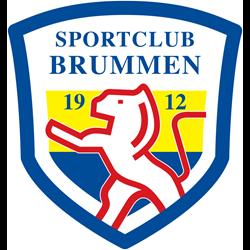Brummen Beweegt logo print