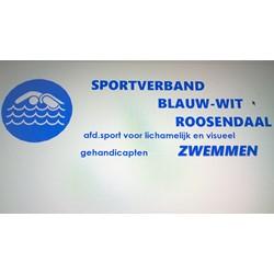 Blauw-Wit logo print