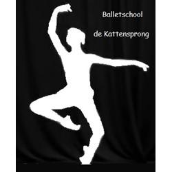 Balletschool de Kattensprong logo print