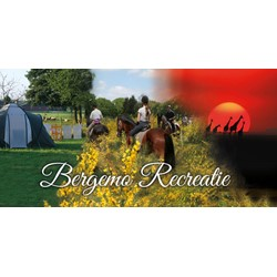 Bergemo Recreatie logo print