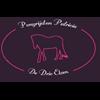 Logo Ponyrijden Patricia