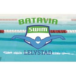 Batavia Swim logo print