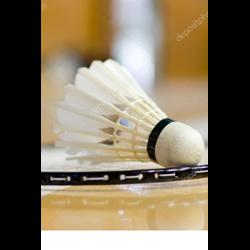 Badminton vereniging Woudenberg logo print