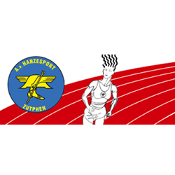 A.V. Hanzesport logo print