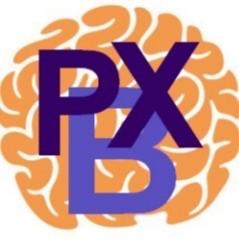 Parkinson BoXing Zevenaar logo print