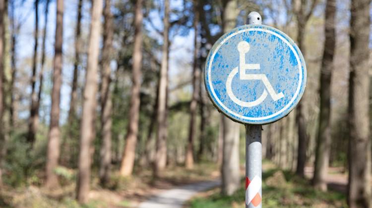Ontdek de natuur in je rolstoel met deze tips afbeelding nieuwsbericht