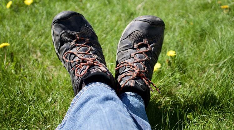 Breng beweging in je zomer: Tips om vandaag nog te starten met wandelen afbeelding nieuwsbericht