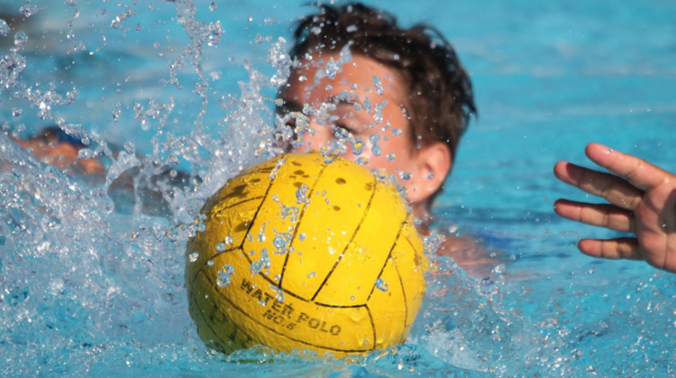 Uniek Zwemmen in Brabant afbeelding nieuwsbericht