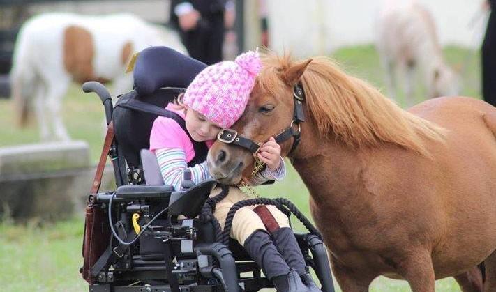 Winnie (9) zit liever op een paard dan in haar elektrische rolstoel afbeelding nieuwsbericht