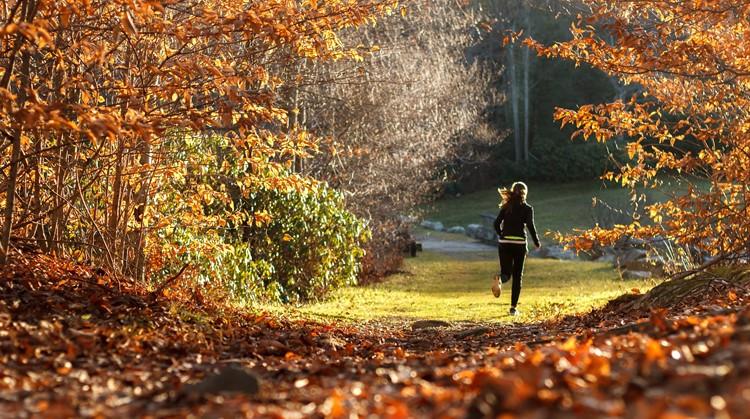 10 redenen en tips om in de herfst en winter buiten te bewegen afbeelding nieuwsbericht