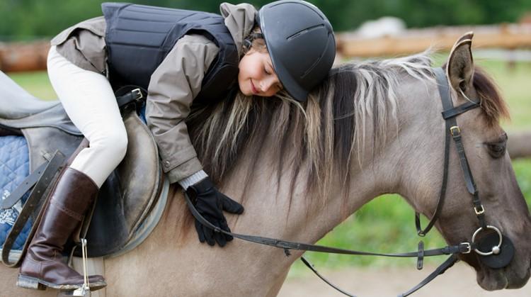 Paardrijden met een verstandelijke beperking? Bij speciale maneges raakt jouw kind vertrouwd met een paard afbeelding nieuwsbericht