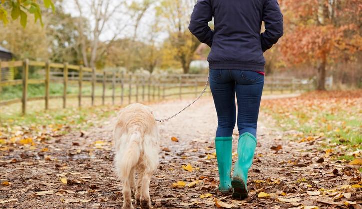 Zelfs een wandelingetje helpt al als je artrose hebt. afbeelding nieuwsbericht