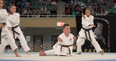 Afbeelding Karate zonder armen en benen