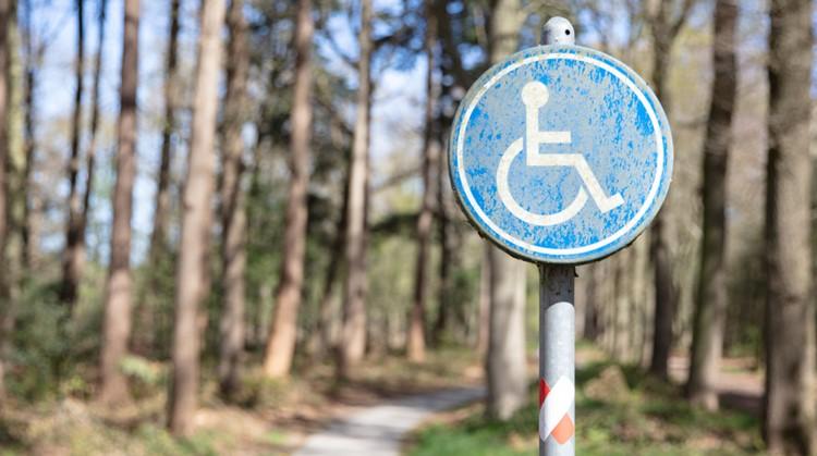 De 10 mooiste rolstoelroutes in de natuur afbeelding nieuwsbericht