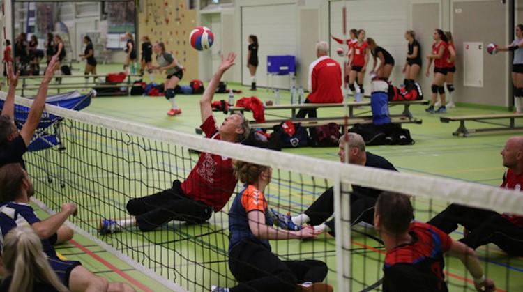 VV Zaanstad stopt zitvolleybalteams niet weg afbeelding nieuwsbericht