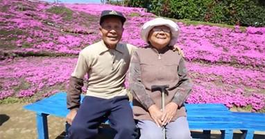 Afbeelding Deze man legde een enorme bloementuin aan voor zijn blinde vrouw