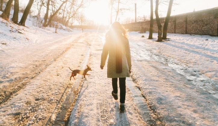 Deze wonderlijke ontdekking over wandelen wist je vast nog niet afbeelding nieuwsbericht
