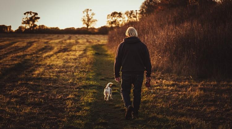 10 tips om je wandeling nog leuker te maken afbeelding nieuwsbericht