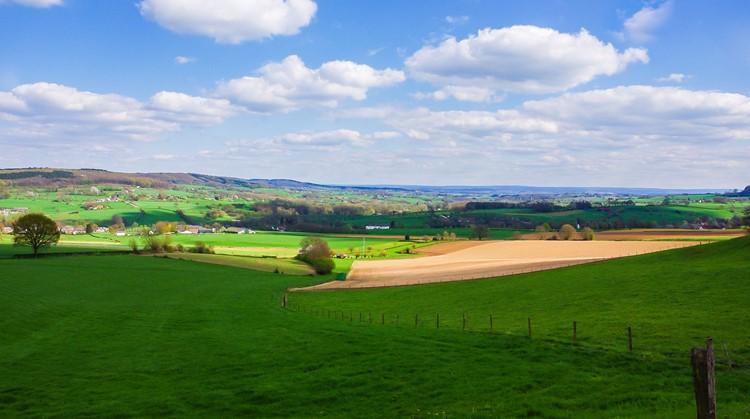 Ga de Limburgse heuvels in op deze rolstoelpaden! afbeelding nieuwsbericht