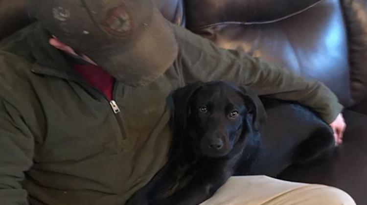 Dove man leert doof hondje gebarentaal afbeelding nieuwsbericht